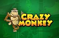 Популярный игровой автомат Crazy Monkey