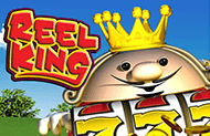 Автоматы без регистрации Reel King